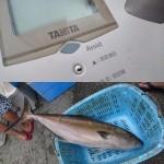 魚の重量も測れる!? TANITA(タニタ)の「Assistモード付き体重計」が超便利!